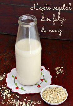 Cum sa faci lapte de ovaz in casa - Lecturi si Arome Raw Vegan Recipes, Vegetarian Recipes, Healthy Recipes, Healthy Breakfasts, Baby Food Recipes, New Recipes, Homemade Cookbook, Semi Homemade, Homemade Mask