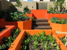 """Raised Bed Garden: Planning A Raised Bed Vegetable Garden """"This edible garden was created by Nicola and Noel Day of Somerset West using all biodegradable and organic products."""