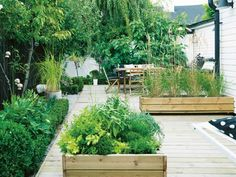 Pretty urban vegetable garden. Love that the raised beds are integrated with the deck!