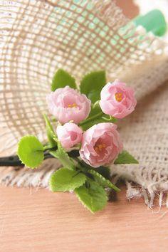 Sweet Pink Cabbage Rose