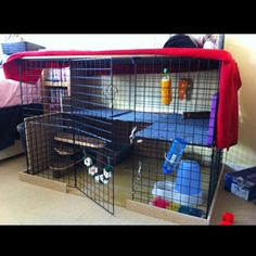 Indoor rabbit cage homemade out of storage unit; I wonder if this is cheaper than buying one-perhaps per square foot of space, it might be...