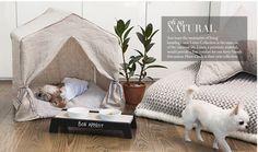 The Ritzy Rover Pet Boutique , Pet Boutique, over 7,884 luxury pet products, designer dog beds,boutique dog collars luxury dog beds , designer pet carriers , rhinestone dog collars, rhinestone collars,designer dog beds, designer dog blankets, custom furni