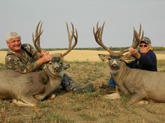 If a 200-inch muley is your dream, don't forget Alberta. It has some of the best mule deer hunting in the world. Deer Sounds, Mule Deer Hunting, Big Game Hunting, Don't Forget, Dreaming Of You, Animals, Animales, Animaux, Animal