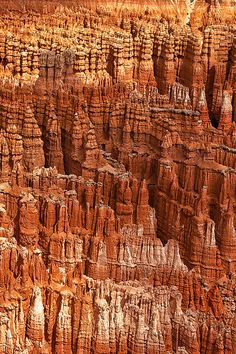 Close-up of the hoodoos of Bryce Canyon National Park in Utah. Mother Earth, Mother Nature, Beautiful World, Beautiful Places, Photography Tips, Nature Photography, Bryce Canyon, Canyon Utah, Rock Formations