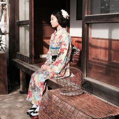 """""""【ラフォーレ】【着物】 大好きなお花の着物。お嬢さん風にスタイリング。  モデルは女優の松岡美沙ちゃん。  Styling kimono Princess style favorite floral. I have designed the fabric to take to photograph the…"""""""