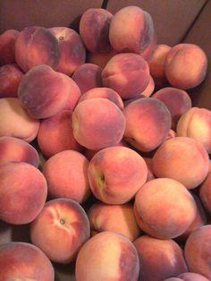 Peaches from the Valley - peach nail Peach Nails, Peach Fruit, Cream Aesthetic, Shades Of Peach, Beautiful Fruits, Short Nail Designs, Fresh Fruits And Vegetables, Roald Dahl, The Magicians