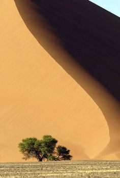 namib desert -- The oldest Desert in the world is also the most beautiful. From the massive red dunes at Sossusvlei to the Skeleton Coast the Namib Desert is sure to delight! Image Nature, All Nature, Amazing Nature, Nature Tree, Mother Earth, Mother Nature, Beautiful World, Beautiful Places, Landscape Photography