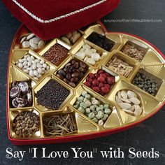 """Say """"I Love You"""" With Seeds"""