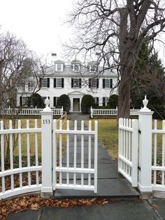 """Nothing says """"welcome"""" like a white picket fence!"""