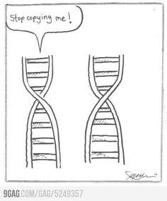 biology humor DNA Stop copying me Science Cartoons, Funny Science Jokes, Science Puns, Nerd Jokes, Nerd Humor, Life Science, Science Ideas, Science Comics, Science Posters