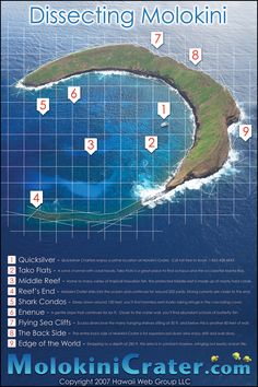 Molokini - I went scuba diving at spot #6! Beautiful & memorable!