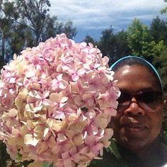 When Oprah took her first gardening selfie. Sunday Happiness..just picked a hydrangea from my garden