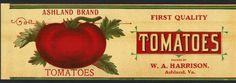 ASHLAND Vintage Tomato Can Label