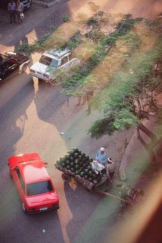 Watermelon Man - Cairo, Egypt
