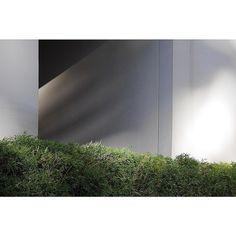 Tunnel of love - http://ift.tt/1T5JTv5 #minimalzine #noicemag #fdicct #archivecollectivemag #rentalmag #lekkerzine #subjectivelyobjective #minimalmood #thisveryinstant #oftheafternoon  #thentherewasus #minimalism #myfeatureshoot #heylovlab @mrneilmason #mrneilmason #motherlondon #minimalist #minimalism #archivecollectivemag #brettmagazine #phroommagazine #lasvegas #vagas #minimalist #creativereview #neilmasonphotography @archivecollectivemag #architecturephotography #neilmasonphotograpy…