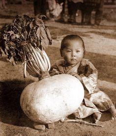 Japanese boy with a giant Daikon (radish). Unknown photographer. S)