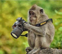 C'è una grande differenza tra lo scattare una foto e fare una fotografia.  · Robert Heinecken ·