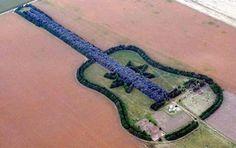 Guitar Shaped Farm House