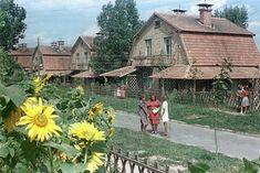 Предметы советской жизни - Цветущий Киев 1950-х на снимках Бориса Игнатовича  Kiev, USSR