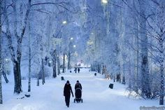 Fond memories of wintry Helsinki as snow falls on Seattle. Photo courtesy of Helsinki City Tourist Information. Winter Photos, Winter Ideas, Winter Landscape, Winter Scenes, Snow Scenes, Countries Of The World, Beautiful World, Places To Visit, Around The Worlds