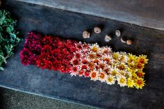 Poppytalk: Fall Floral Garland