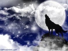 Nightwolf!