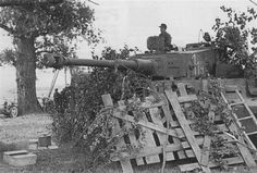 Tiger 1 nr. 114 of schwere Panzer Abt 507 in a camoflaged position