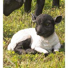 Resting Lamb Suffolk Sheep Garden Statue In Black - Plow & Hearth Cute Little Animals, Cute Funny Animals, Cute Cats, Baby Animals Pictures, Cute Animal Pictures, Rare Animals, Animals And Pets, Labrador Retriever, Baby Cows