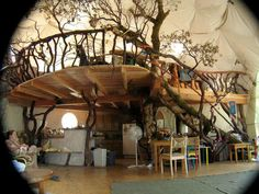 What a great venue for a Woodland theme party