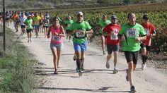 La Carrera entre Viñedos, que se celebrará el 25 de octubre en Cenicero, espera congregar 1.500 participantes y aumentar la participación femenina, que el año pasado alcanzó el treinta por ciento, tal y como ha informado el director de la carrera, Carlos Gil-Díez.