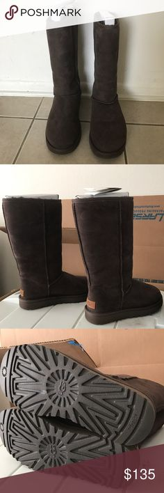 """Woman Classic Tall Ugg's - Size 8 Woman Classic Tall Ugg's - Size 8  Chocolate Brown  13"""" high  Worn twice but just in the hotel.  So most likely its New  Excellent Condition. It was 200$  I still have the card but No box UGG Shoes Winter & Rain Boots"""