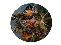Baltimore Orioles Bird Plate Kevin Daniel Garden Collection