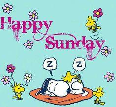 Que a felicidade floresça hoje na sua vida!! 😄🌼😊🌷 #goodmorning #sunday #snoopy #woodstock #peanuts