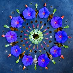 Danmala by Kathy Klein - In vedic sanskrit dān: the giver, mālā: garland of flowers the giving of flower circles