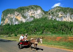 Vinales Valley, Cuba Vinales, Cuba Cars, Lithuania, Havana, Places To Travel, Caribbean, Portugal, Scale, Landscapes