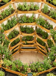 The system consists of just six parts, which include a standard-sized planting box, shelves and fixings.