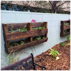 put these above play garden filled with various plants and flowers for children to care for