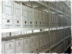Archivo Parlamento de Extremadura