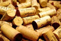 Senza trucco, le donne del vino naturale