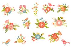 Backyard Blooms Vector Flowers - Illustrations - 2