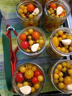Sweet Cherry Tomato Pickles - Dill, Garlic, Cherry Tomatoes & Husk Cherries (aka Mini Tomatillos)