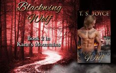 Twin Sisters Rockin' Book Reviews: New Release: Blacking Wolf by T.S. Joyce