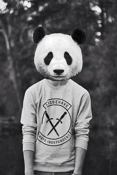 #panda #blackandwrithe 💭🌚