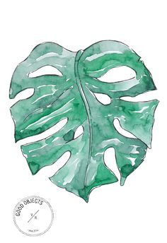 Good objects - Check out the new video ! Watercolor speed painting the classic monstera leaf. Easy watercolor tutorial for beginners #goodobjects #watercolor #illustration
