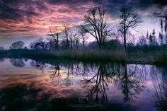 Photograph Ultraviolet by Dariusz Łakomy on 500px