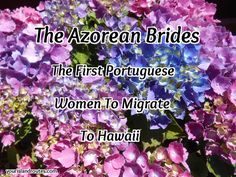 In 1864, eleven young women from the Azores Islands migrated to the Kingdom of Hawaii. They were pledged as brides to successful Portuguese men already living in Hawaii. These were arranged marriag…