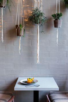 Plant Hanger, Food Photography, Planter Pots, Home Decor, Decoration Home, Room Decor, Home Interior Design, Home Decoration, Interior Design