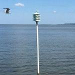 Pier Birds Fairhope Alabama, Summer 2015, Wind Turbine, Birds, Couple, Pets, Travel, Viajes, Bird