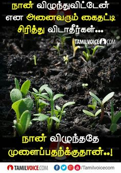 Good Thoughts Quotes, Positive Quotes For Life, Inspirational Thoughts, Deep Thoughts, Positive Vibes, Voice Quotes, Mistake Quotes, Tamil Motivational Quotes, Confidence Quotes