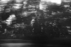 Barba ao Vento: Velocidade
